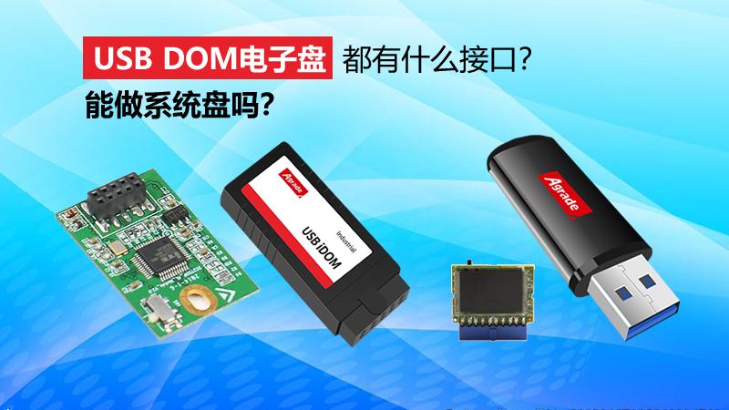 USB DOM盘都有什么接口?能做系统盘吗?
